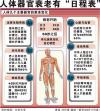 人体20个重要器官衰老时间表作