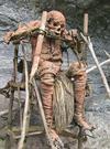 新几内亚土著恐怖的尸体仪式,勇士才享这样待遇